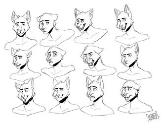 expressions sheet comm