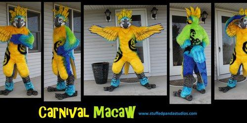 Carnival Macaw fullsuit