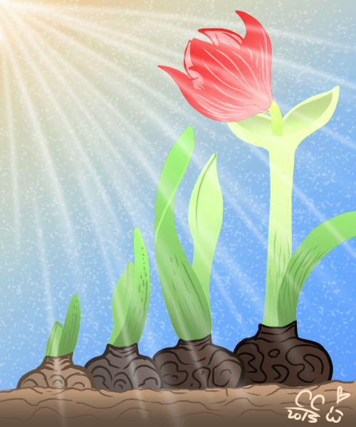 Amaryllis: Art of Growing