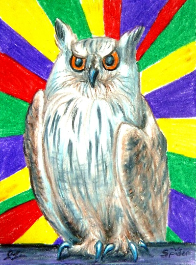 DASwap ACEO--Resting Owl Face