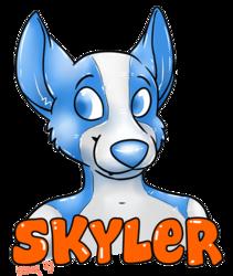Skyler badge