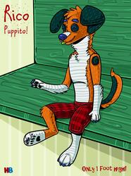 Rico Puppito!