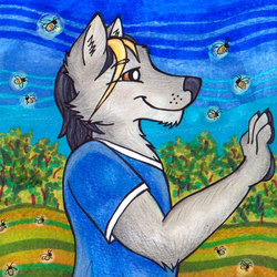 Firefly Field - LittleWolf