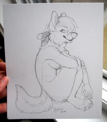 Vizza Sketch
