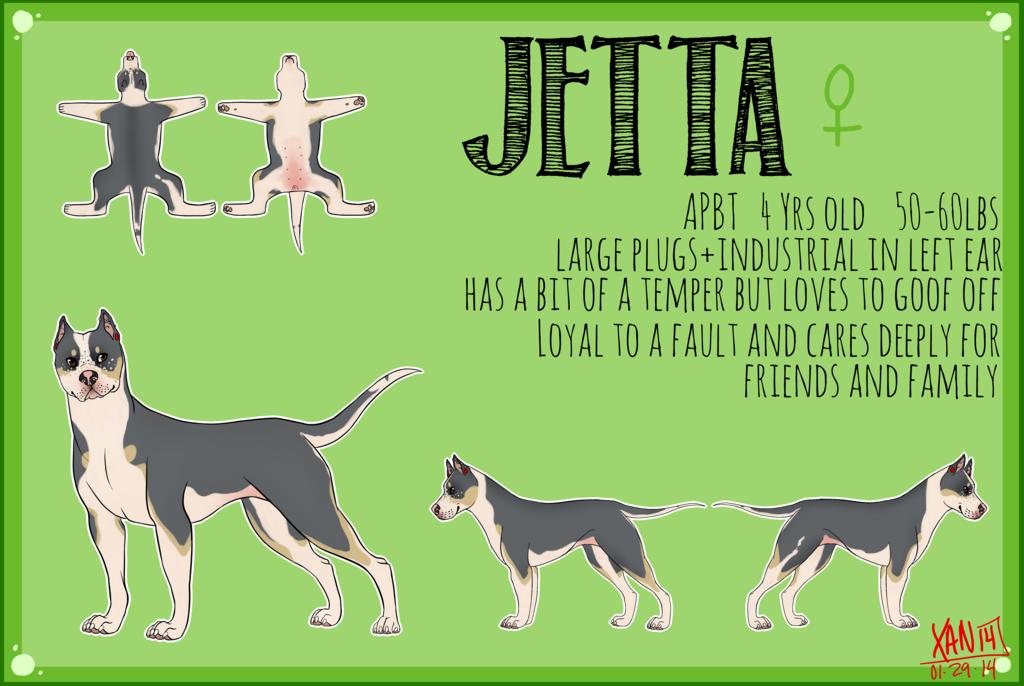 Jetta Reference Sheet