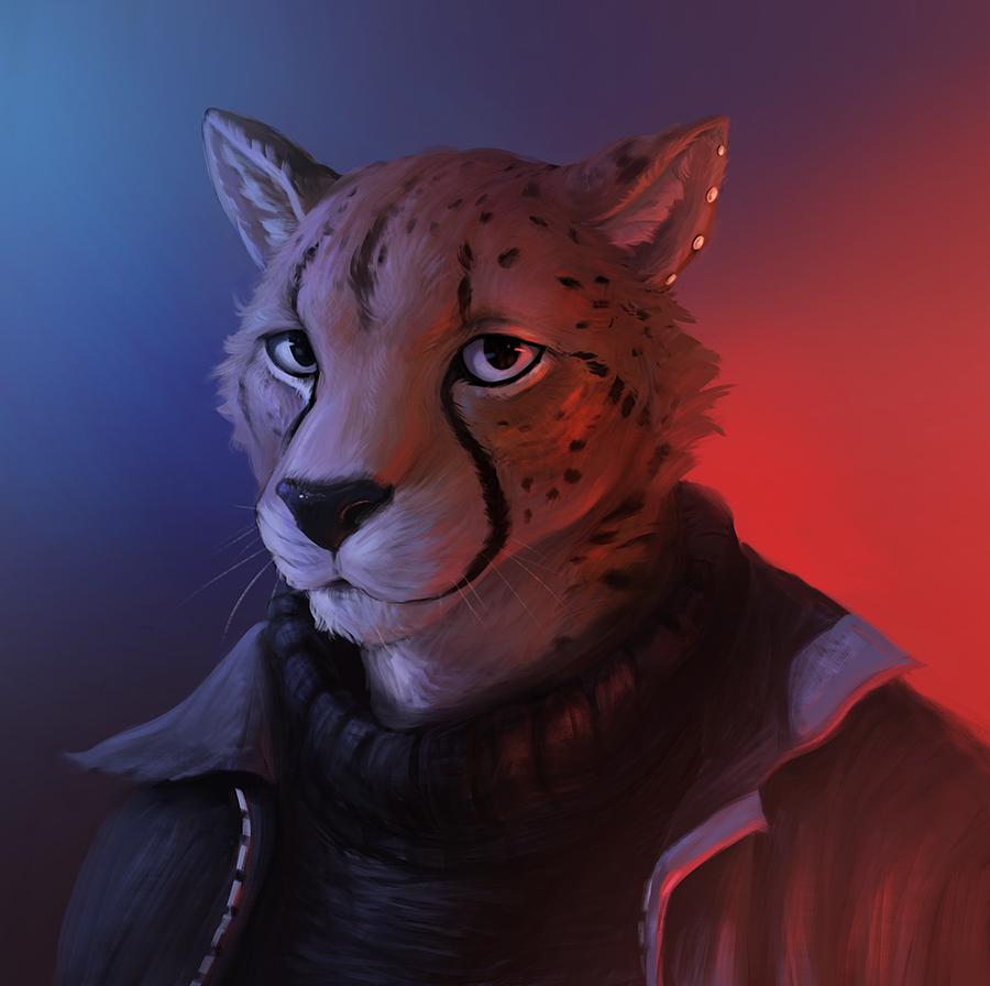 Most recent image: Cheetah