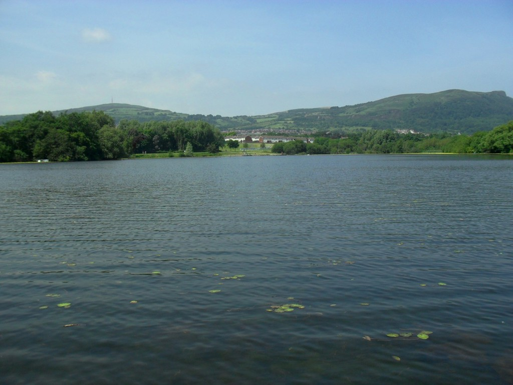 This is a picture of a lake near my house