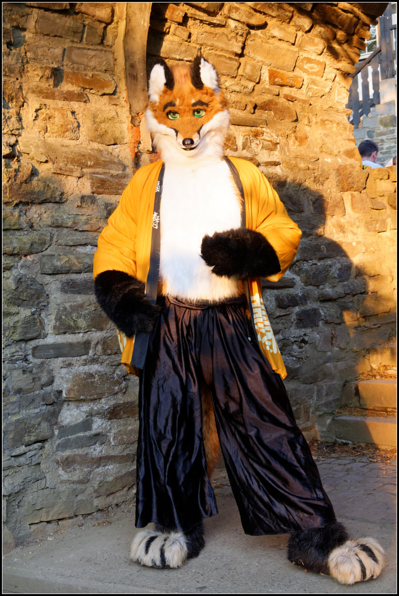 Fox fursuit