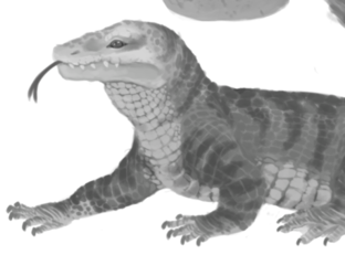 Commission: Velacopachysaurus melanops