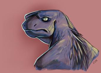 Disgruntled lizard