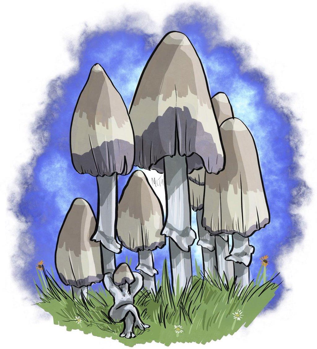 Mayshroom Common Ink Cap