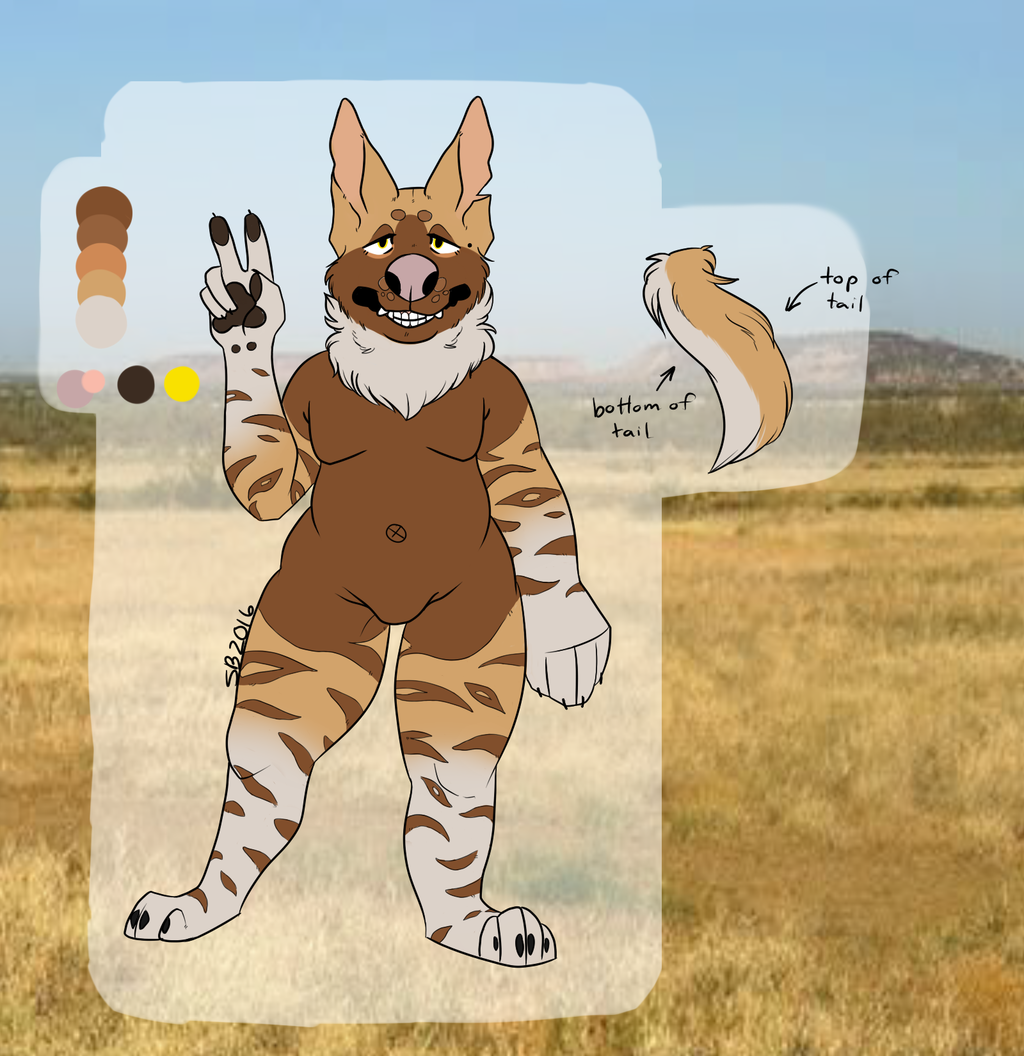 the babes new sona