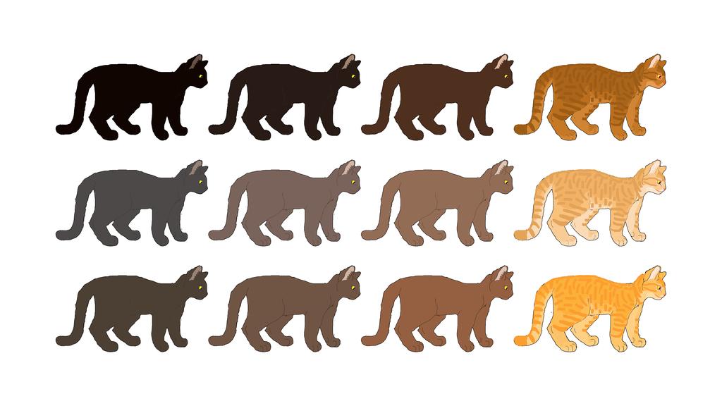 Cat Genetics Guide: Solid Base Colors