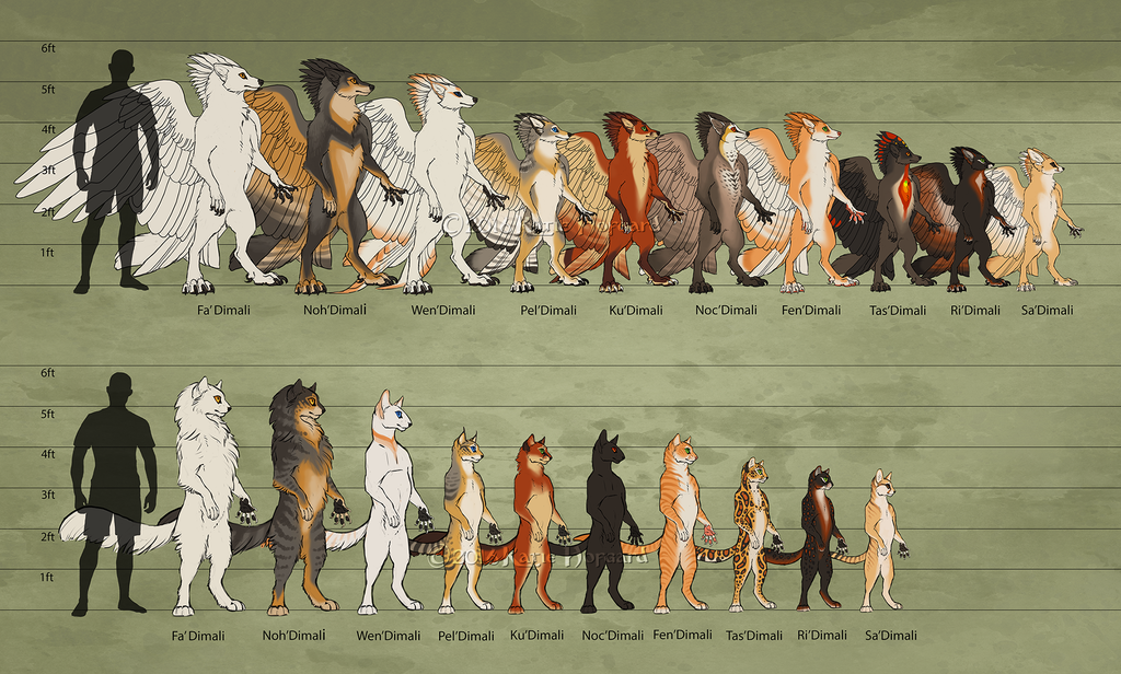Tribes of TeaFeathers Size Chart