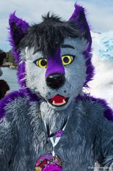 FurJAM 2018: Winter Wolf
