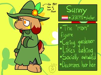 Sunny Ref V3