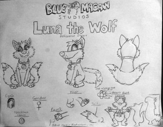 Luna the Wolf Reference Sheet