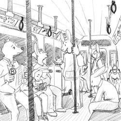 Bunnies! On the B Train!