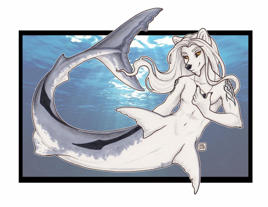 Feeling Sharky today #MerMay