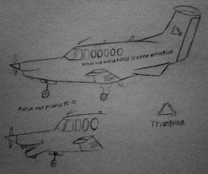 Aaron the Pilatus PC-12