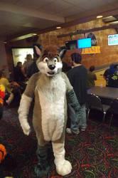 Furry Meet Pictures 14 (Part 59)