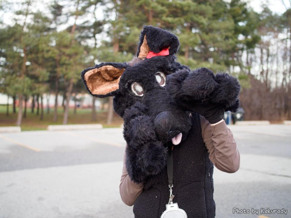 Furnal Solstice 2015 - black mouse