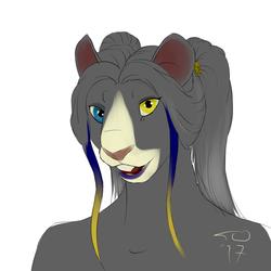 Chincilla rat portrait
