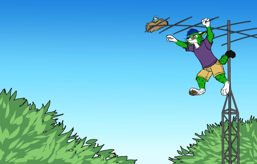 Most recent image: Darn Birds