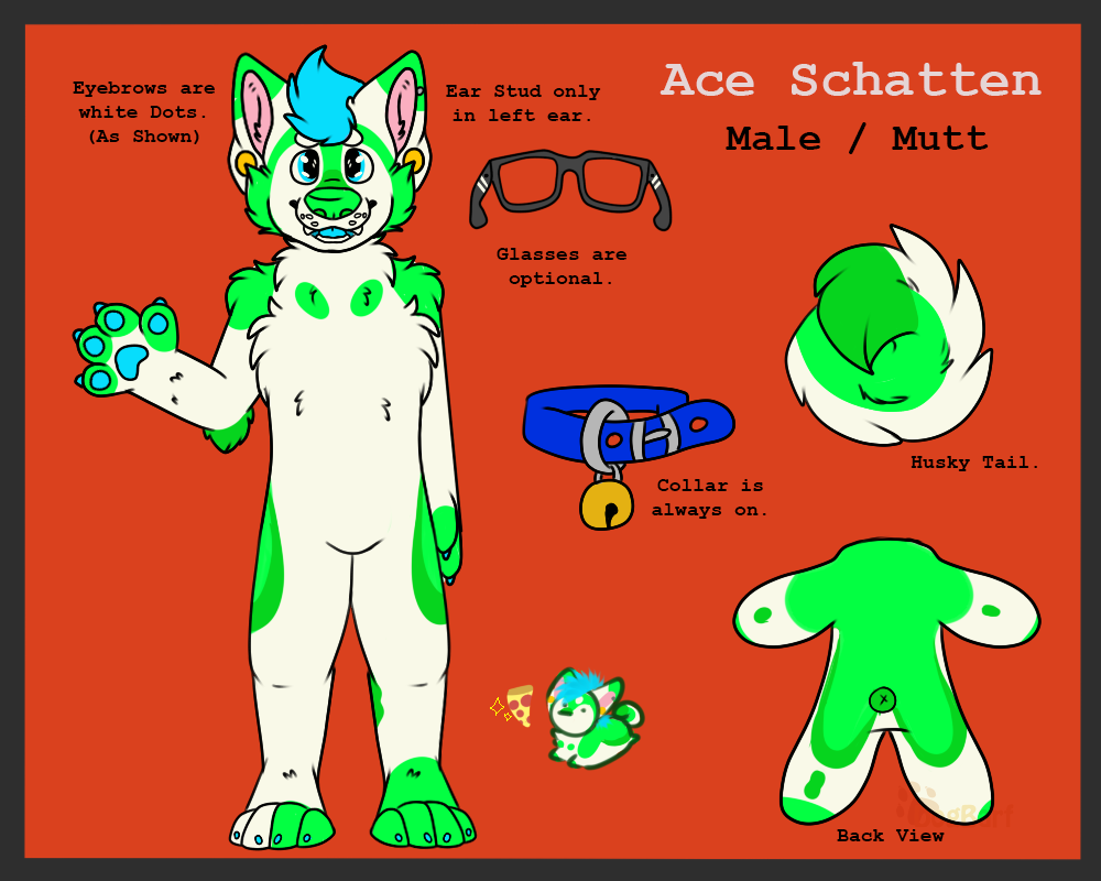 Ace Schatten Reference 2015/2016