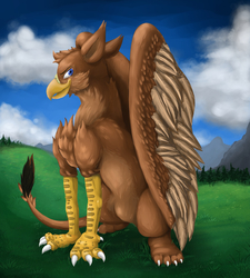 The Proud Gryphon