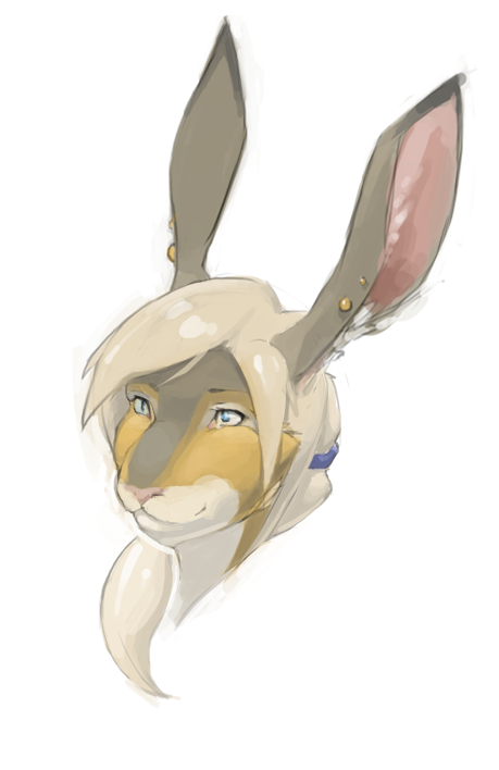 Jackrabbit Portrait by Taus