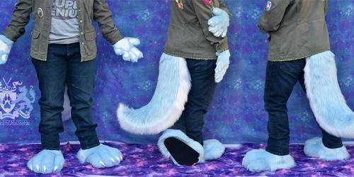 Blue Wolf Hand/Feet/Tail Set