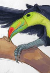 Jungle Gryphon