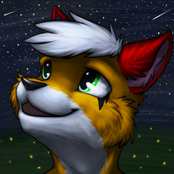 Summer night sky with fireflies