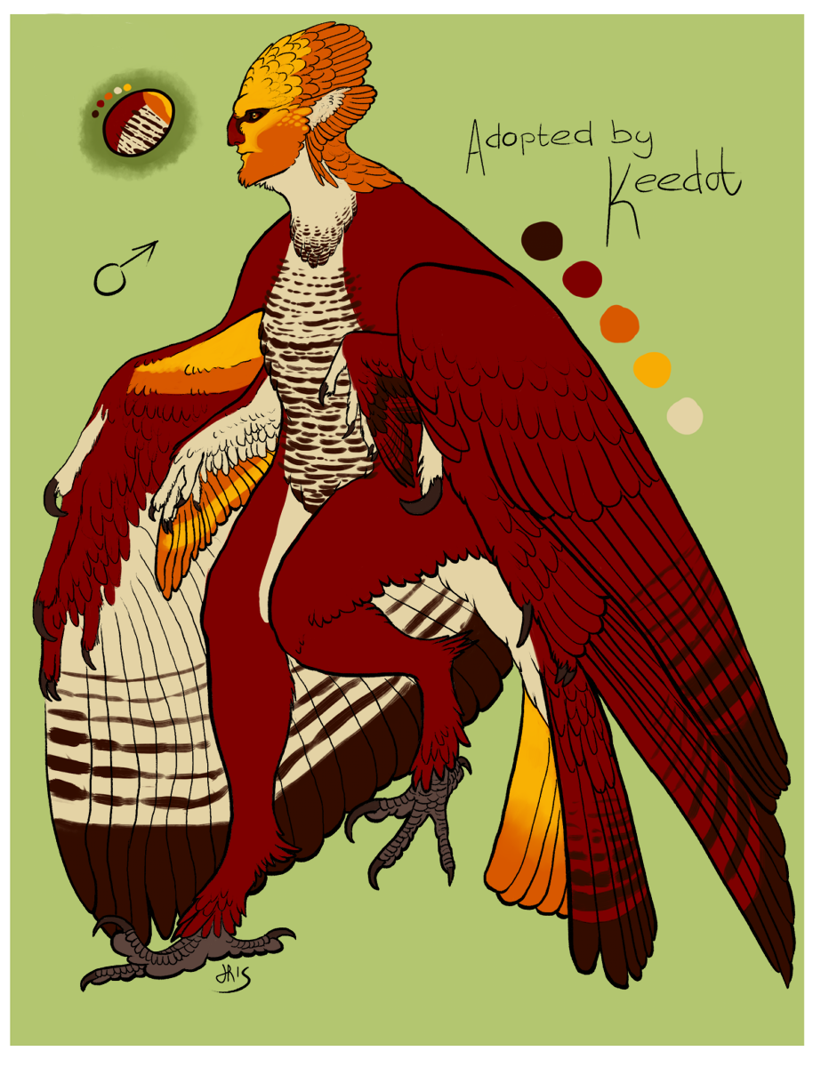 Male Harpy Adopt for Keedot