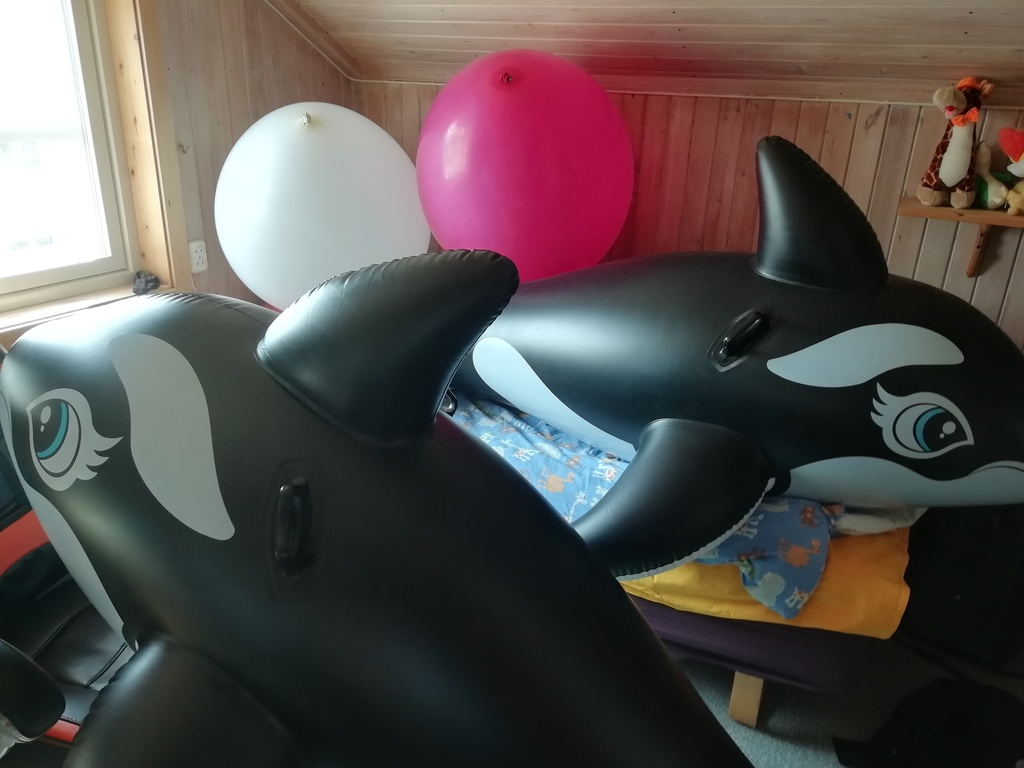 Most recent image: Inflatables and Big Balloonies!~