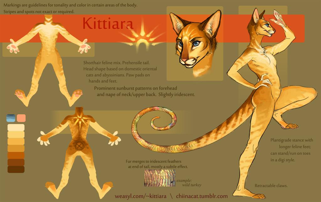 Kittiara Character Sheet 2k14
