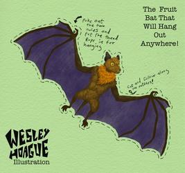 The hanging around bat