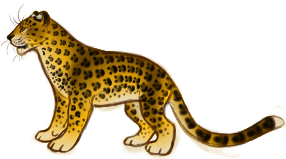 Leopardess