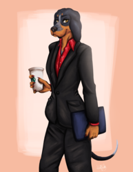 Business Doge