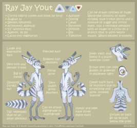 Ray Jay Yout 2013 REFERENCE