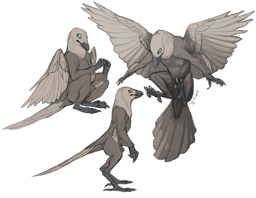 Anthro Crows