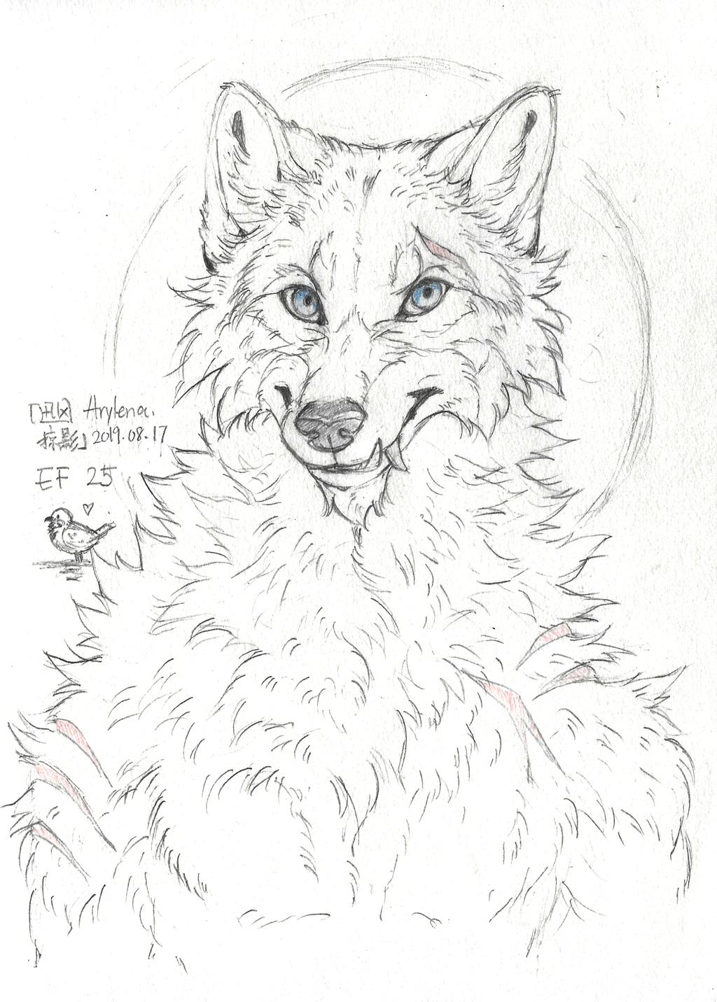 Sketch by Arylena