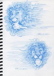Lions on LSD