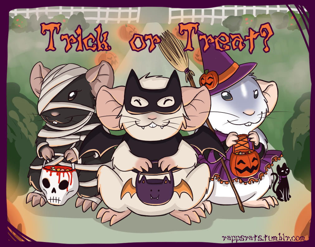 Most recent image: trick or treat?