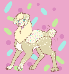 Sprinkles the Llamadog!