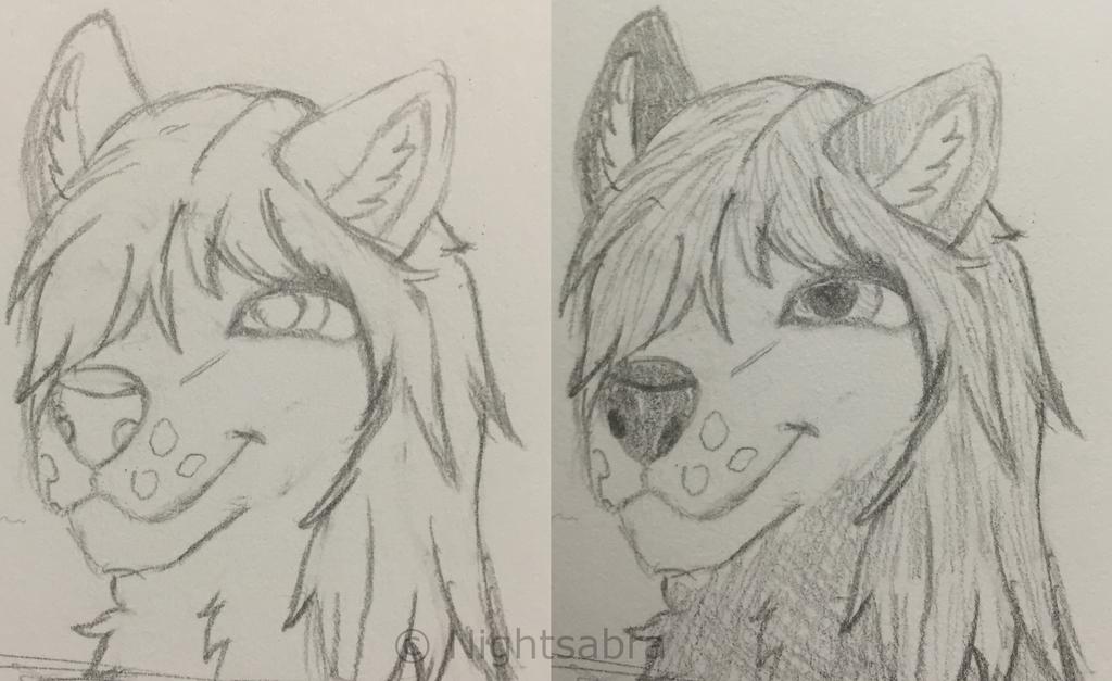 Wolf Girl Headshot Sketch