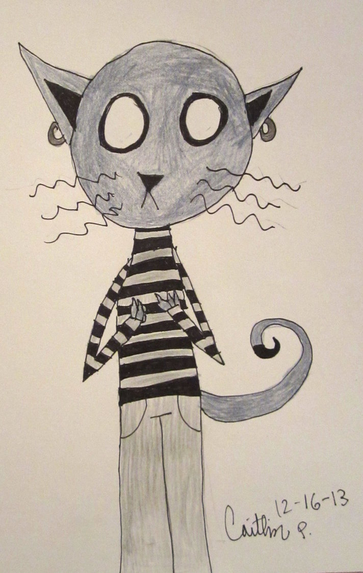 Cats and Sweaters