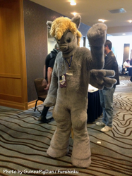 Derpy at FC2015
