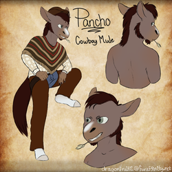($) Pancho concept (sfw)